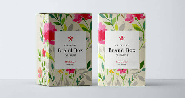 Front Facing Cardboard Packaging Mockup