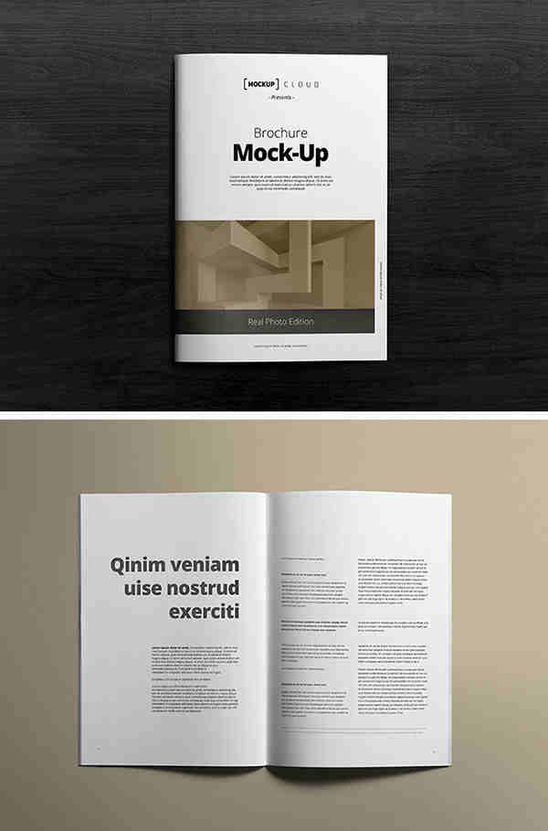2 Clean A4 Brochure Mockups